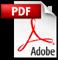 als PDF Dokument